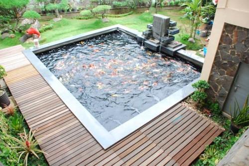kolam ikan minimalis (2)