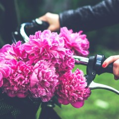kaboompics.com_Bike with flower basket