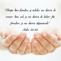 3.8 Spanish