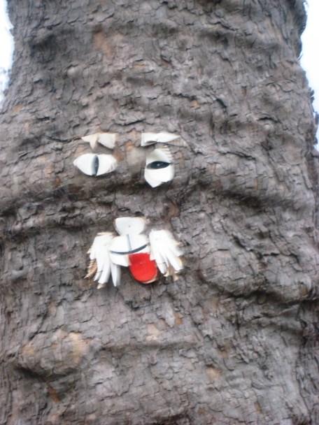 TRIER-street art arboricole-29.11.12 collage visage (1)