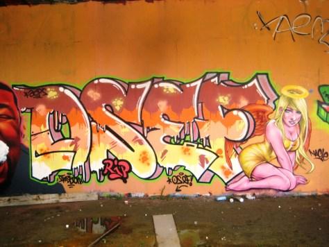 mai 2013_graffiti_besancon_rip_Tew (3)