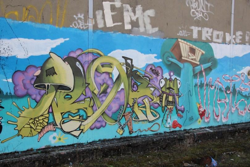 graffiti Dijon (65)