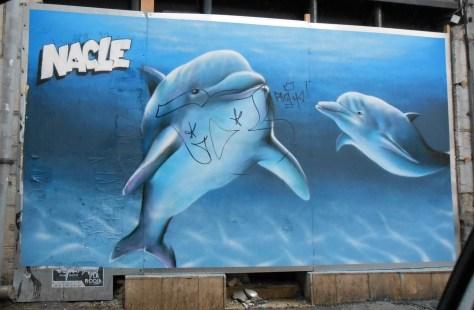 besancon juin 2015 graffiti dolphins - Nacle