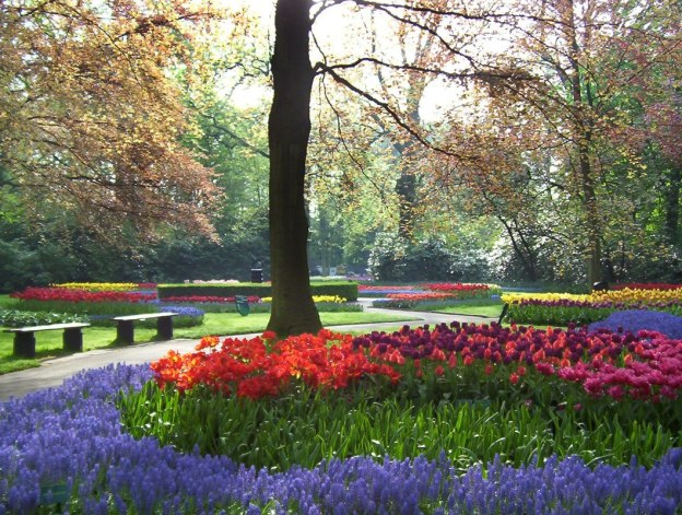 Flower beds along a walkway at Keukenhof Gardens in the Netherlands.