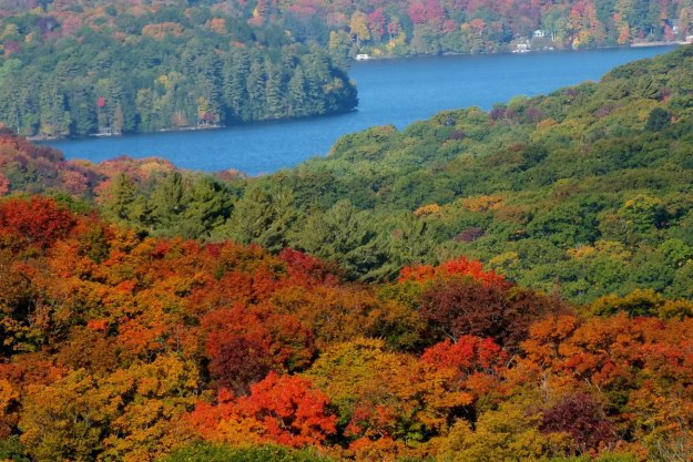 fall colors, lake of bays, ontario, pic 2