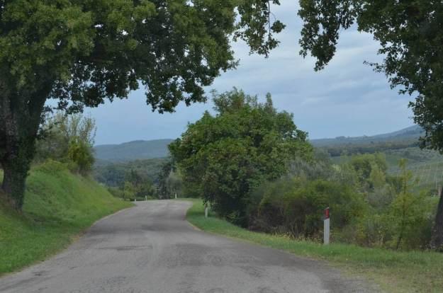laneway to the Cottage at Il Colombaio di Cencio, Gaiole, Chianti, Tuscany, Italy, 10