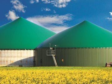 Biogasanlage im Rapsfeld