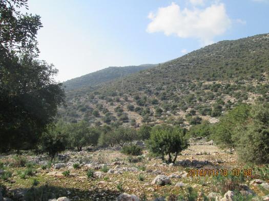 Finike Hills