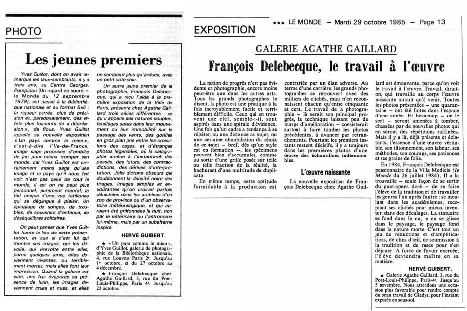 François Delebecque, article Hervé Guibert