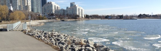 Mimico by the lake