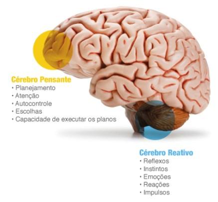 voce-usa-seu-cerebro-eficacia-2