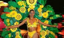 brazil tancosno