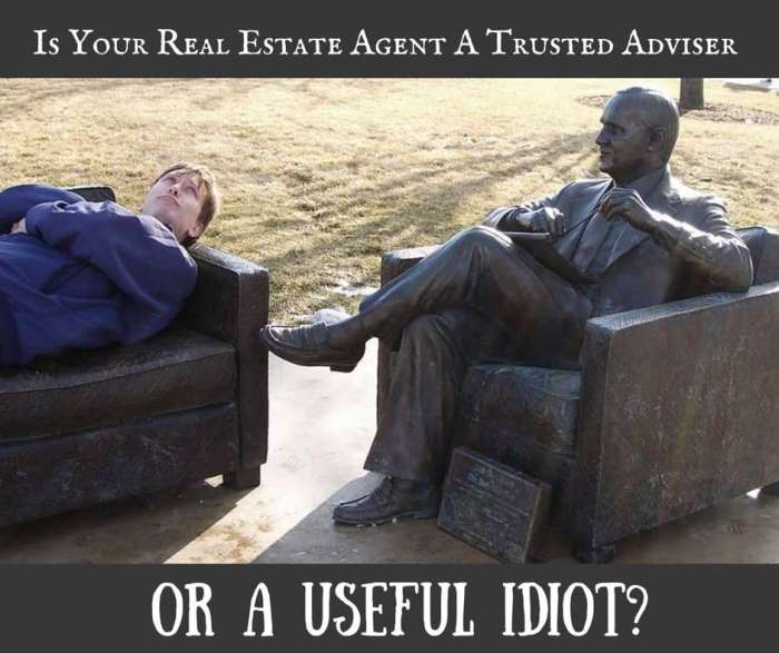 Is Your Real Estate Agent A Trusted Adviser?