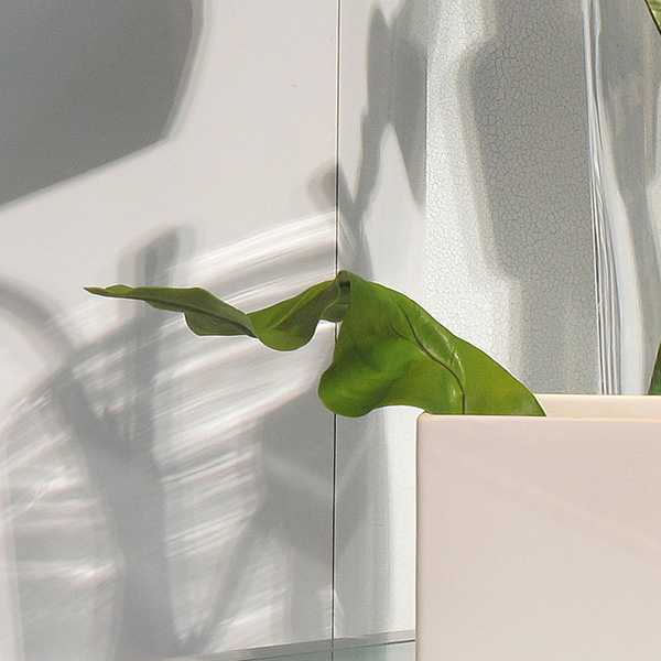 Window Display in Sunlight, 2010, photo by Fred Hatt (detail)