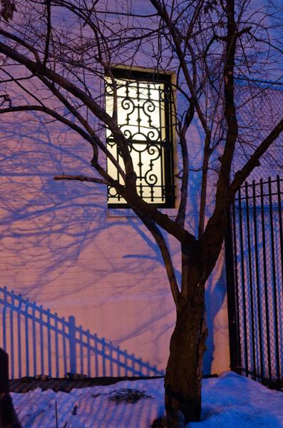 Twilight Tree, 2014, photo by Fred Hatt