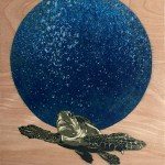 Olive Ridley s