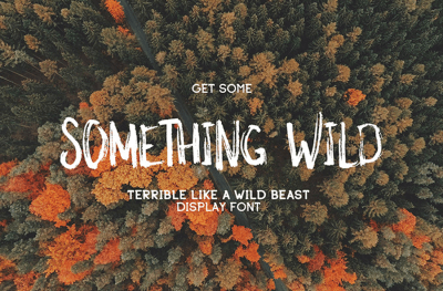 Something Wild Free Font