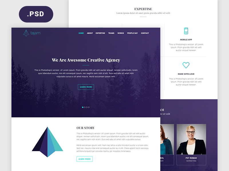 Free Agency Website PSD