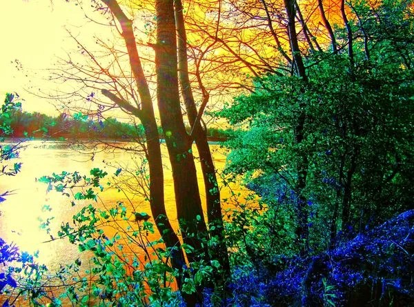 AUTUM PICTURES: Beautiful landscape - autumn forest and river-600x445