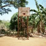 Lost Hoops of Adrian Skenderovic