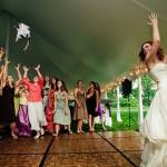"Funny Blog ""Brides Throwing Cats"""