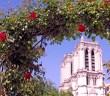 Je vois Paris en rose © French Moments