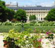 The garden of Palais-Royal © French Moments