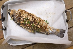 15 MORE Fast & Flavorful Rainbow Trout Recipes