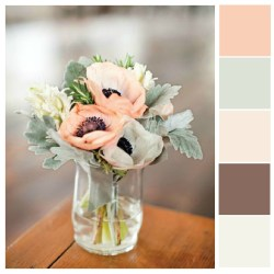 Small Crop Of Muted Color Palette