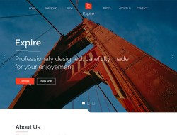 Expire Free Website Template