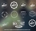 Free Vector Insignia Hipster Ornaments