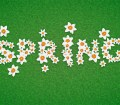 How to Create a Daffodil Text Effect for Spring in Adobe Illustrator