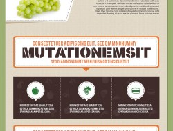 Free Infographics Template in Food and Nutrition Theme