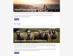 Free Material Design Lite WordPress Theme