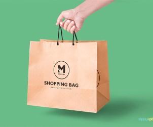 Free Paper Bag Mockup In Handheld View
