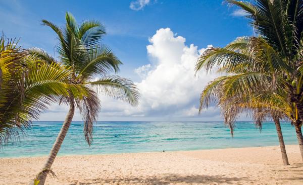Beach_Palm_Trees_Riviera_Maya___Flickr_-_Photo_Sharing_