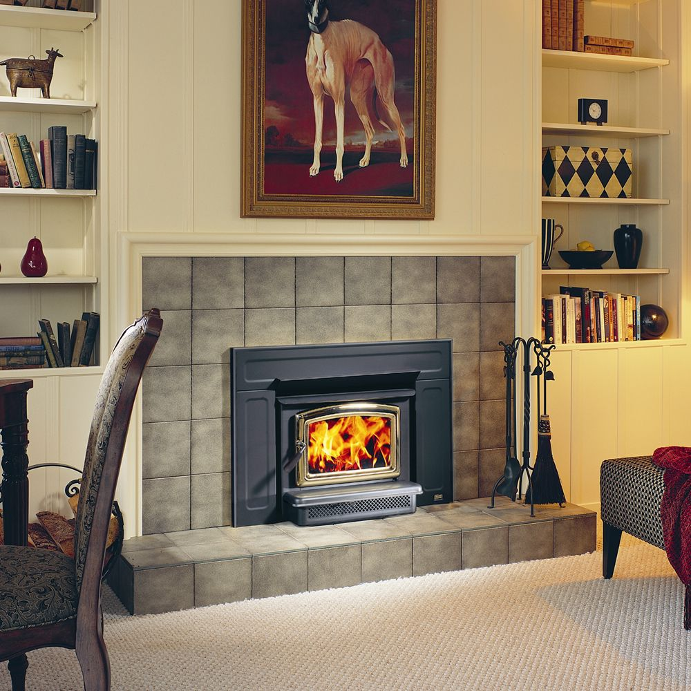 Pacific energy vista friendly fires Contemporary wood fireplace insert