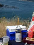 A Lopez Island picnic.