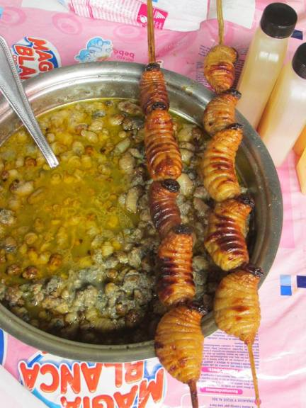 Suri is a popular worm/bug here that is also eaten in Chazuta and San Martin.  I promise this looks more appetizing than when they are sold live.