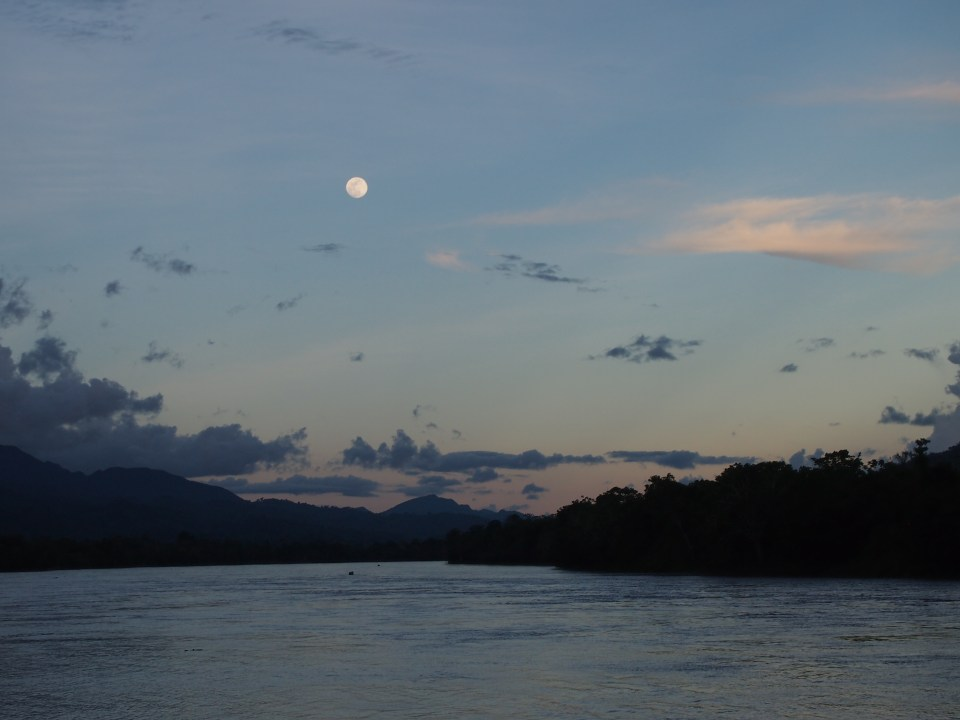 Full moon in Chazuta.  Time to prune the cacao trees.