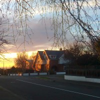 One Year of Living in Timaru
