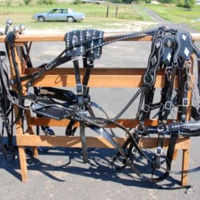 diamond team parade harness