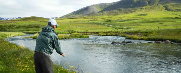 Seeking Salmon on the Fljotaa River in Iceland