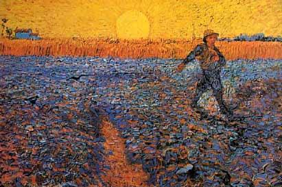 The Sower: Proper 10  (Pentecost 8)