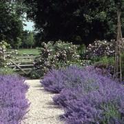 Gravel Garden Path - R. Rule