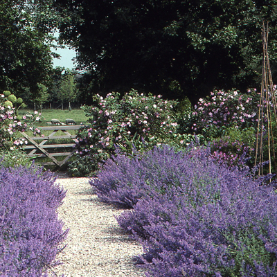Gravel Garden Path - R. Rule
