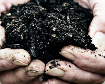Beautiful, Rich Compost