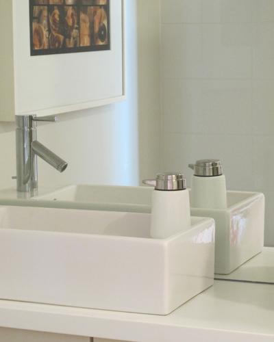 IKEA Sink, Moen Faucet-C. Rule