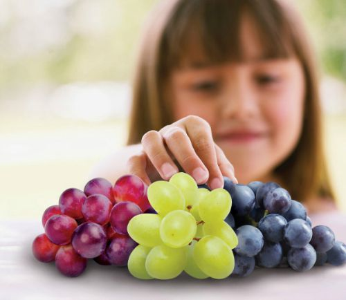 Grapes-from-Mexico-1-600x521