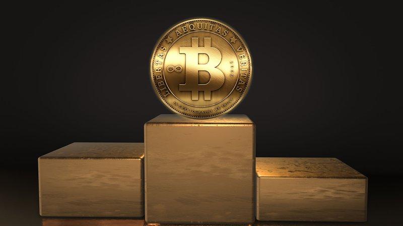 Bank of Canada Bitcoin Standard